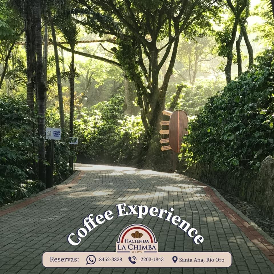 Coffee Experience costa rica hacienda la chimba
